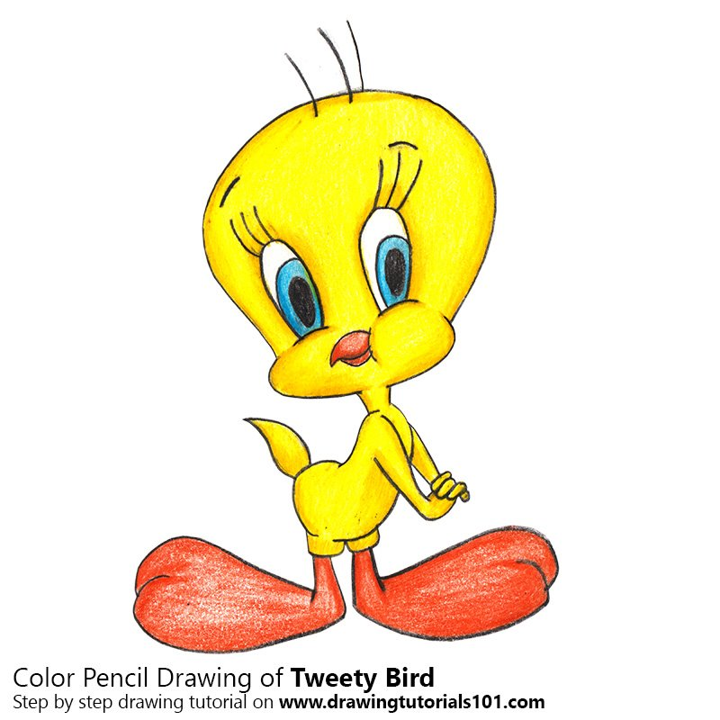 800x800 Tweety Bird Colored Pencils