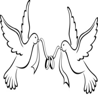 320x320 love birds drawings two love birds drawings love bird drawings