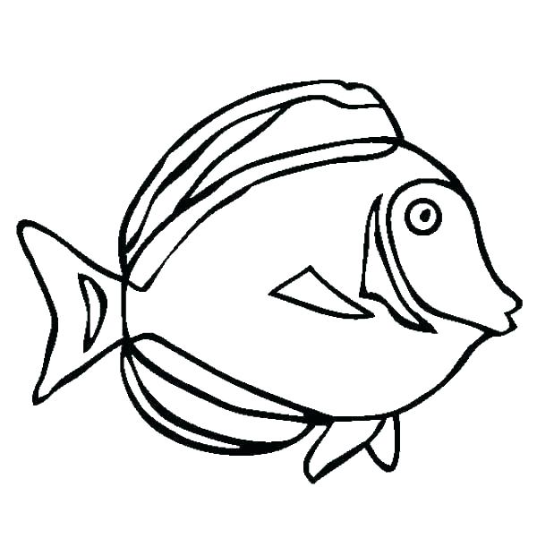 600x611 underwater sea creatures coloring pages underwater sea creatures