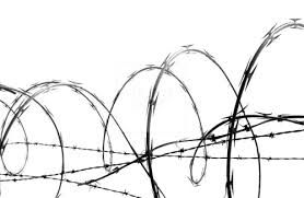 278x181 image result for barbed wire drawing barbed wire barbed wire