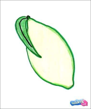 380x454 Easy Fruits To Draw How To Draw A Easy Fruit Drawing Easy Food