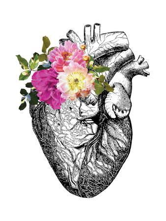 338x450 Beautiful Human Heart Artwork For Sale, Posters And Prints