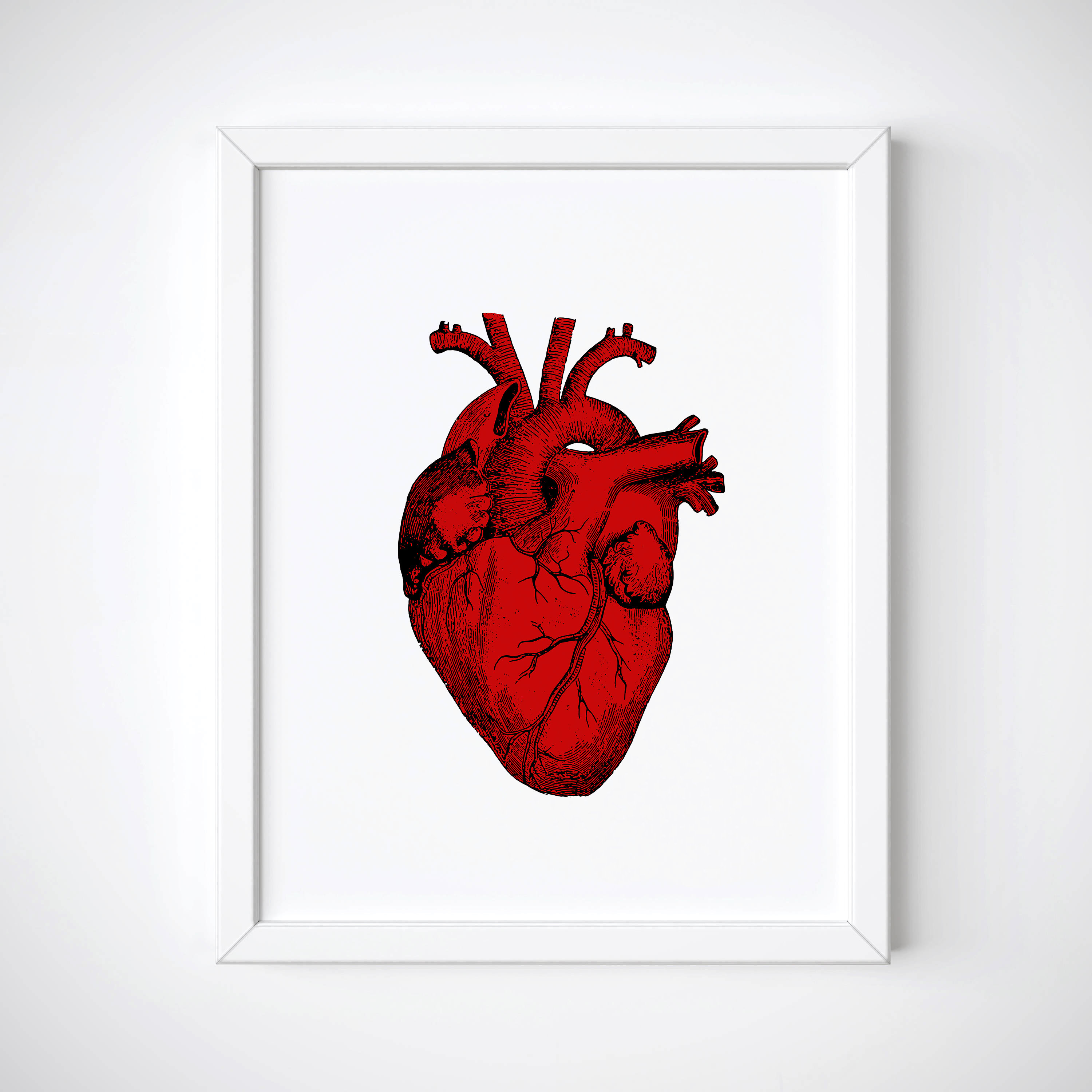 3000x3000 Red Anatomical Heart Print Human Heart Print Tumblr Room Etsy