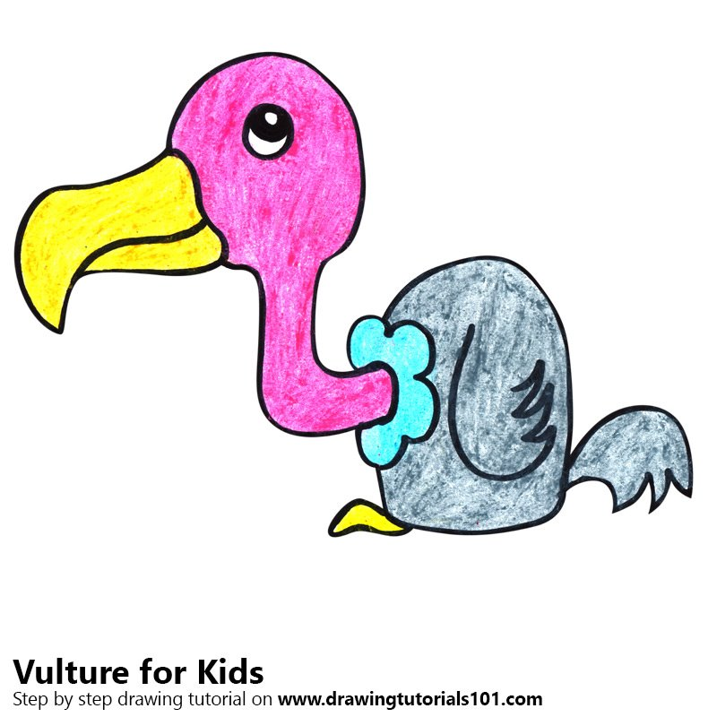 800x800 Learn How To Draw A Vulture For Kids