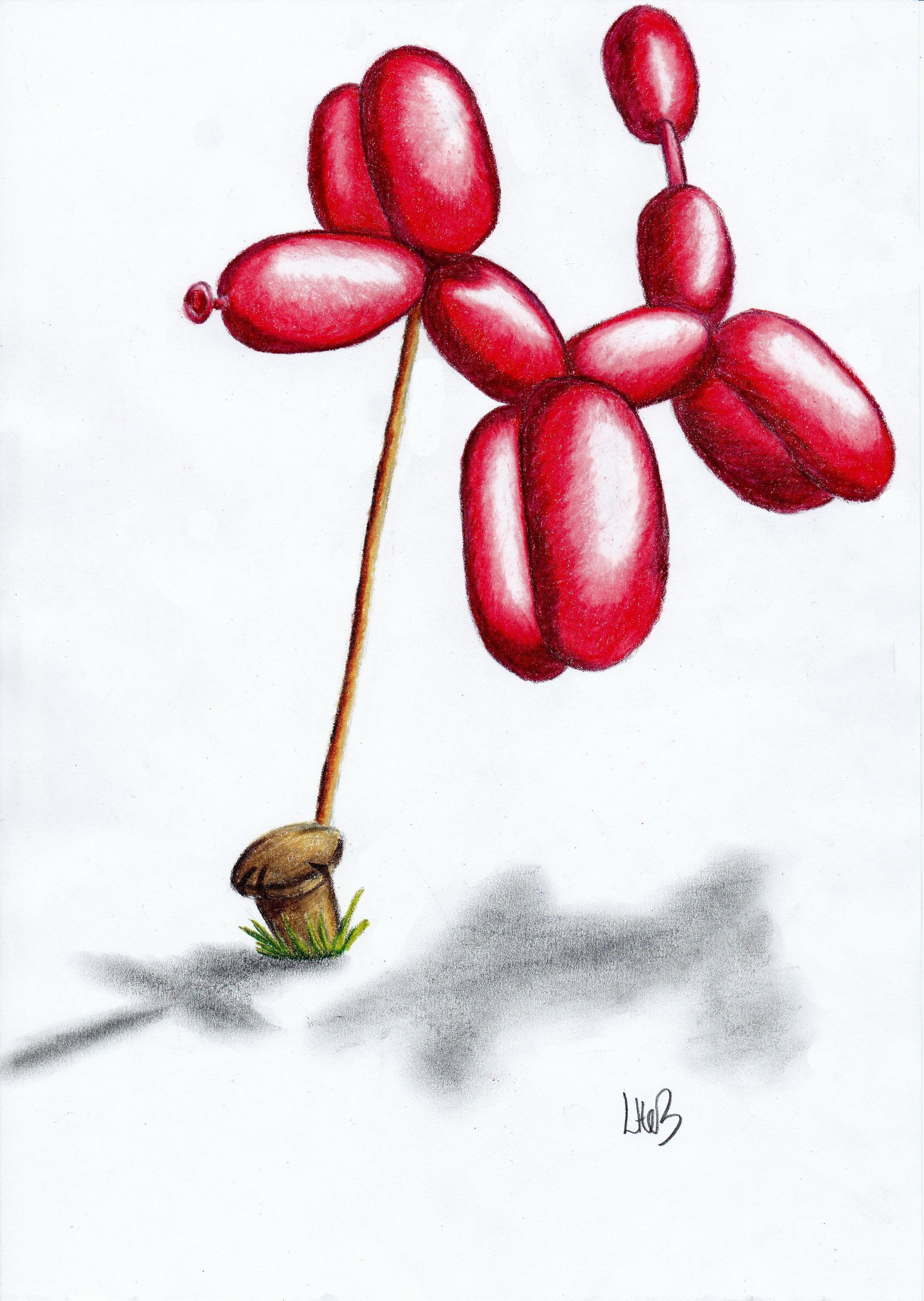 2484x3496 Balloon Dog' Colour Pencil Drawing On Copy Paper Watch The Step