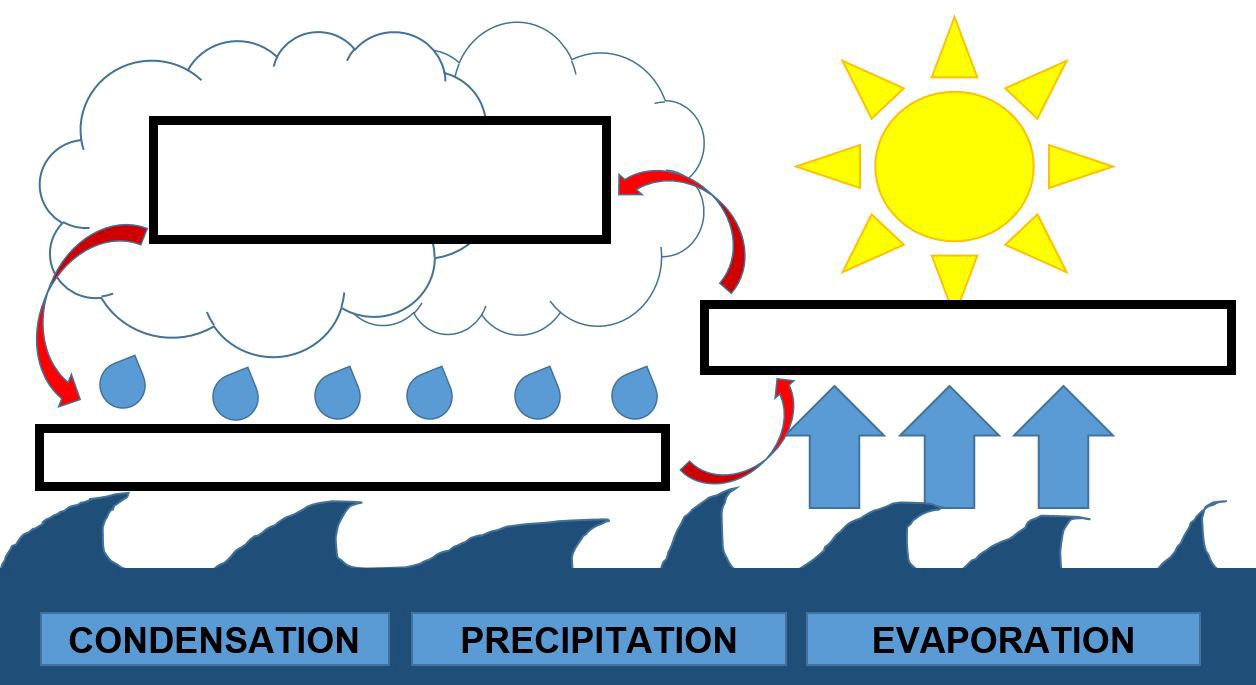 1256x685 Mini Lesson Plan The Water Cycle Littlelives