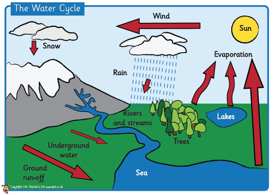 947x676 Water Cycle Diagram For Grade World Of Diagrams