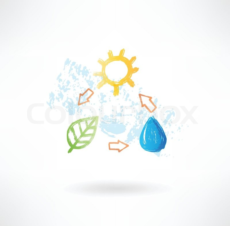 800x788 Water Cycle Grunge Icon Stock Vector Colourbox