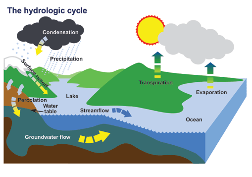 509x357 Collection Of Free Infiltration Clipart Water Cycle Download On Ui Ex