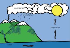 Water Cycle Drawing Assignment