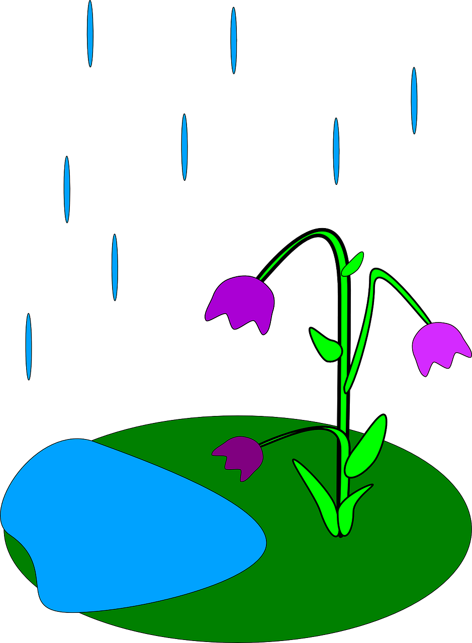 939x1280 How Is Rain Formed