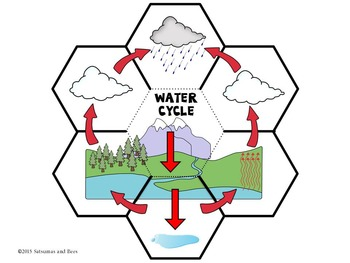 350x263 The Water Cycle Interactive Science Notebook {foldables}