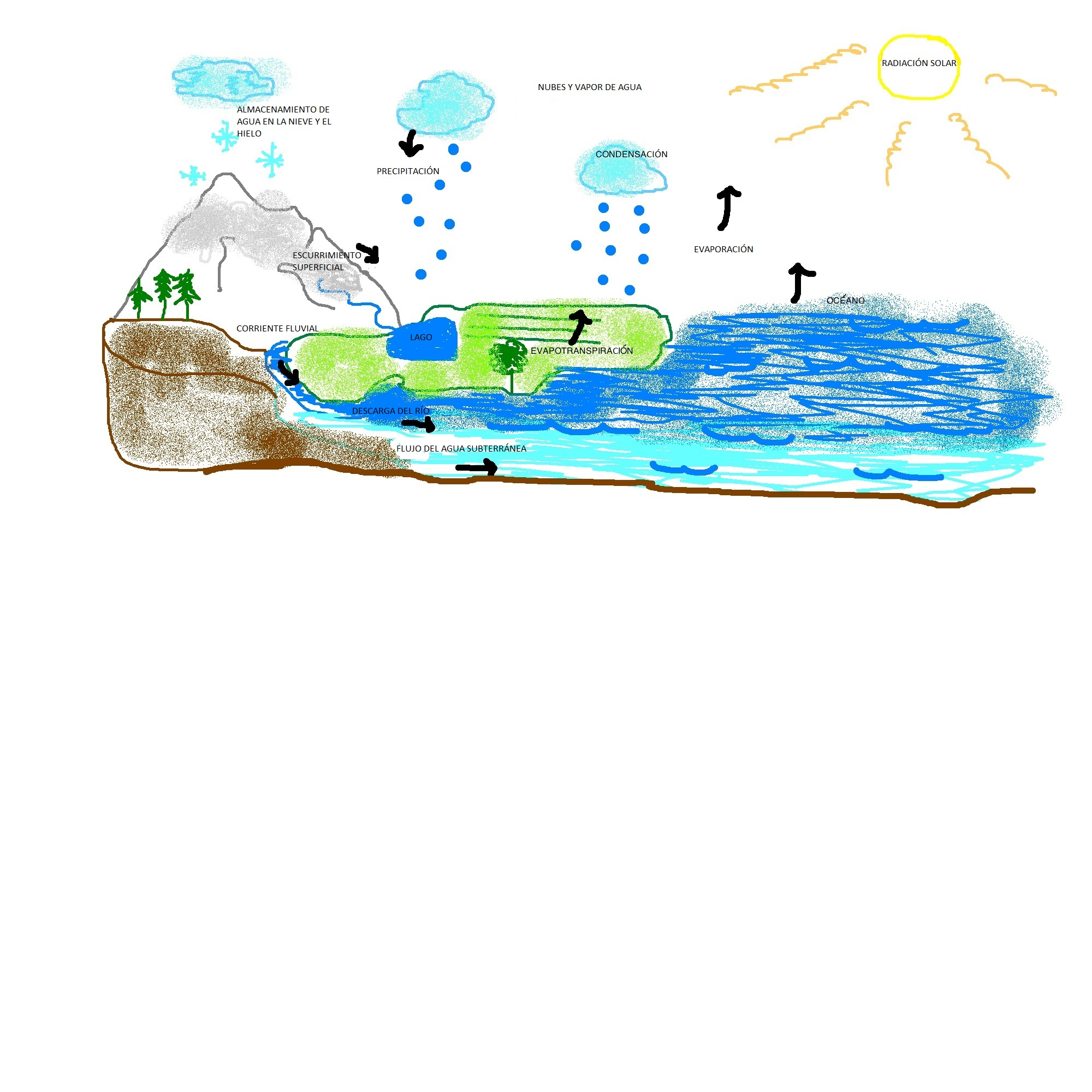 2000x2000 Unit The Water Cycle And Freshwater Resources