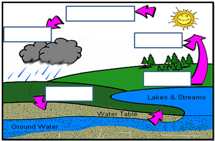 901x591 water cycle unlabeled water cycle water cycle, water