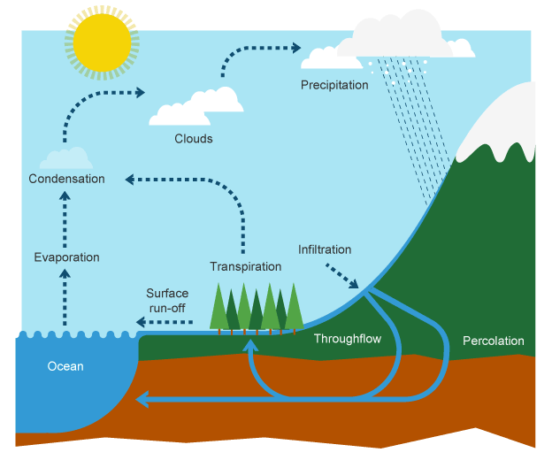 624x520 diagram of the water cycle class meterology nutrient cycle