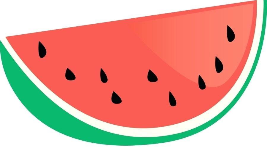 900x500 watermelon drawing watermelon drawing small cute watermelon