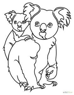 Weasel Drawing