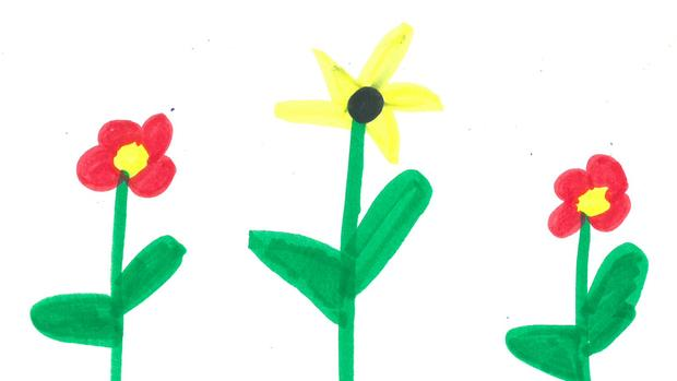 620x349 Weather Drawing Fine Flowers Brainerd Dispatch