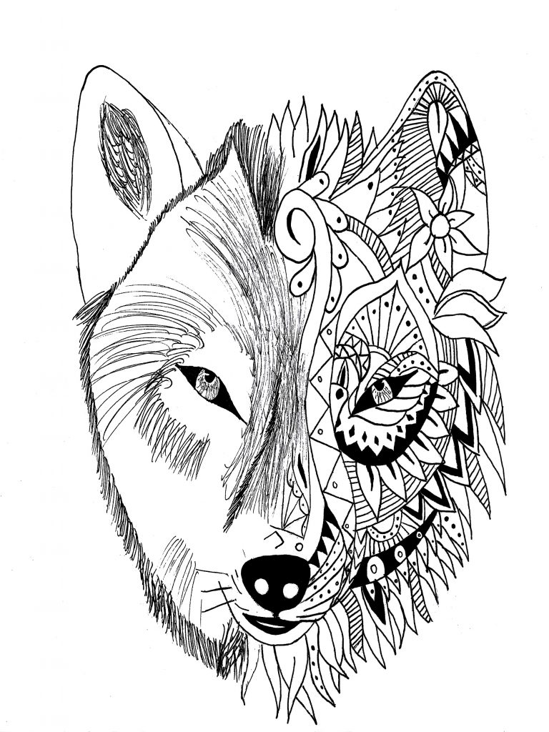 Werewolf Face Drawing   Free download on ClipArtMag