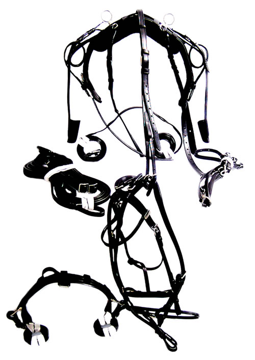500x705 manufacturers exporters equestrian products,tack products,leather