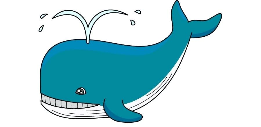 900x440 blue whale drawing blue cartoon whale blue whale drawing download