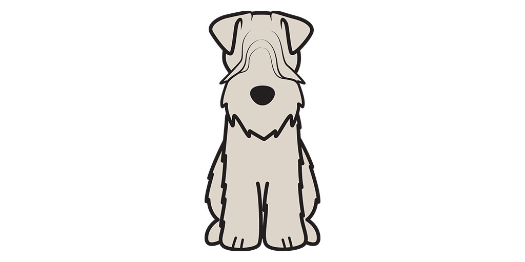 1024x512 soft coated wheaten terrier dog cartoon soft coated wheaten terriers