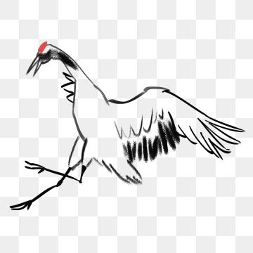 360x360 crane crane, white crane, bird, birds png image and clipart