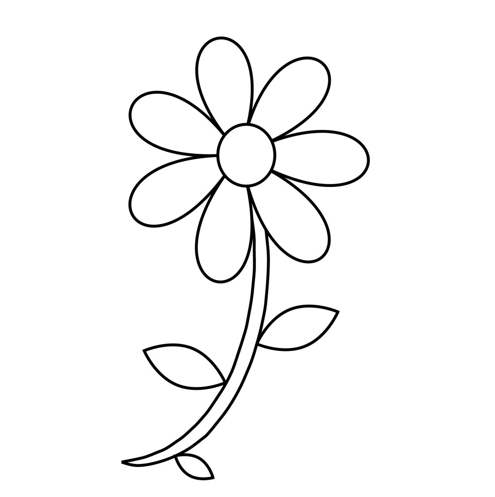1021x1024 Drawing Of A Daisy Flower Outline Free Download Best