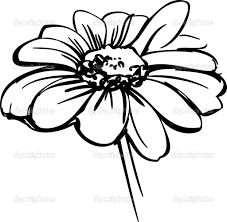 227x222 Best Daisies Images Daisy Drawing, Draw, Daisies