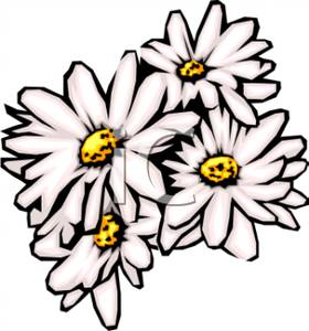 280x300 A Cluster Of White Daisies Clipart Picture