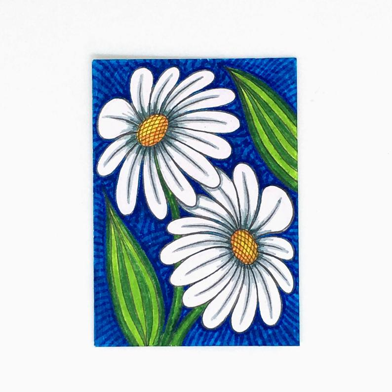 794x794 Original Aceo Drawing Of White Daisy Flowers White Daisies Etsy