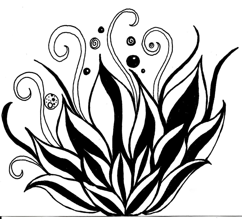 White Lotus Flower Drawing