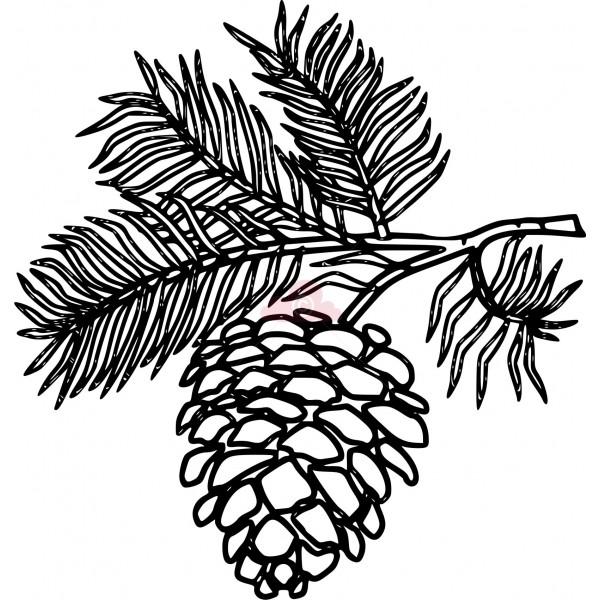 600x600 white pine cone drawing clip art pine cone