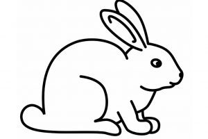300x200 black and white rabbit drawing rabbit black and white bunny black