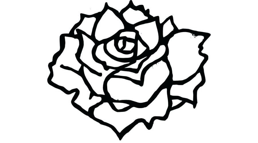 900x500 Rose Line Drawing Clip Art Zupa