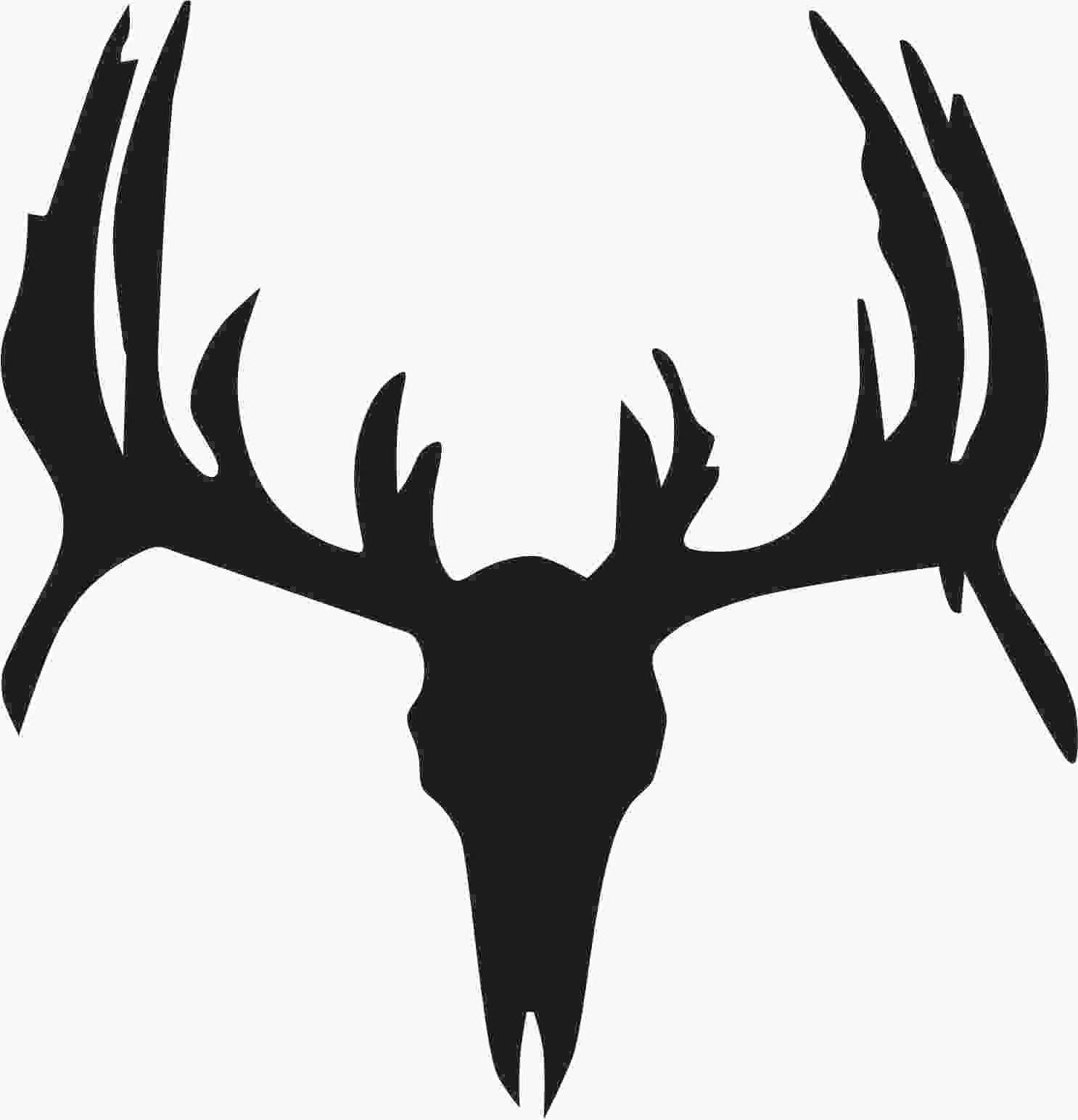 1486x1543 Hd Whitetail Deer Skull Outline Drawings Vector Free Free