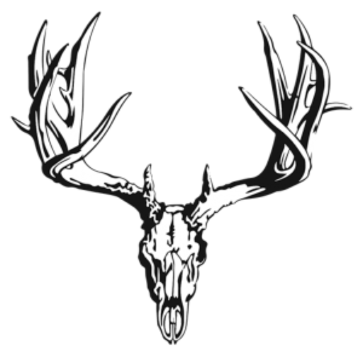 512x512 Collection Of Free Buck Drawing Whitetail Deer Download On Ui Ex