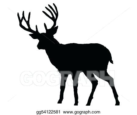 450x380 Drawing Of A Deer Whitetail Deer Drawing Easy Zupa