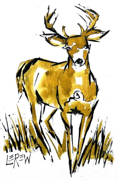 390x600 White Tailed Deer Drawings Fine Art America