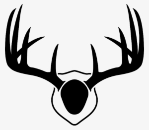 300x262 Whitetail Deer Png Download Transparent Whitetail Deer Png
