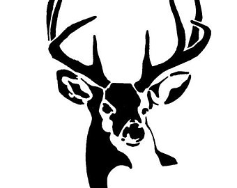 340x270 Whitetail Buck Etsy
