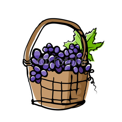 400x400 Grapes In Wicker Basket Drawing With Offset Effect Buy Photos