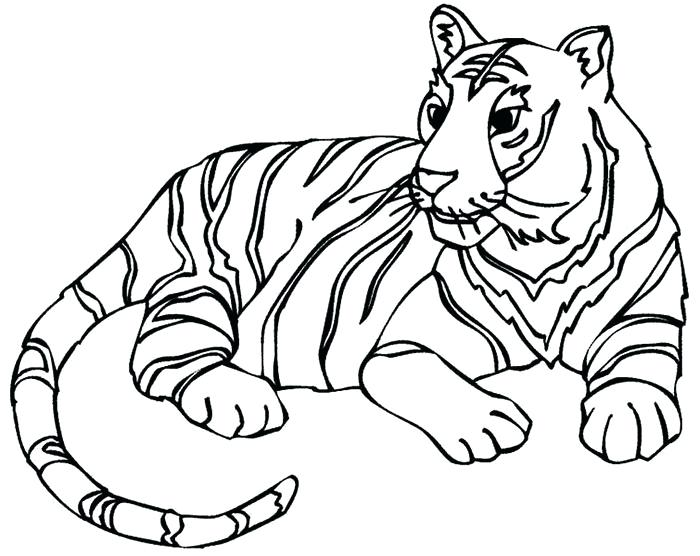 700x556 animals drawing outline animals cute animals outline drawing