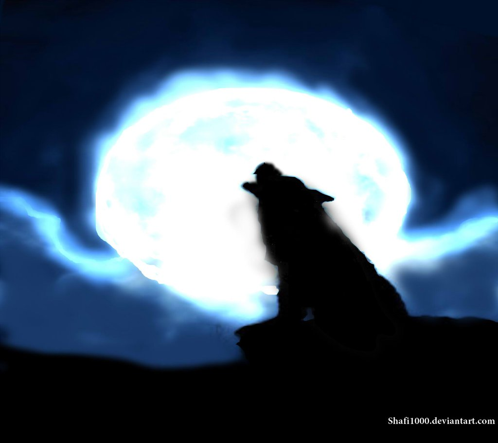 1024x910 Drawings Of Wolves Howling At The Moon Jerusalem House