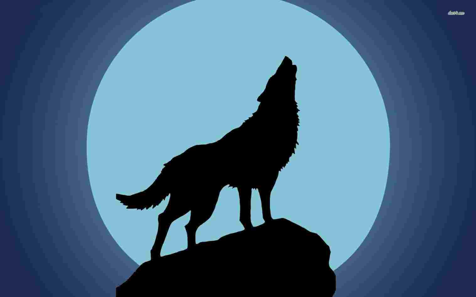 1517x948 For Personal Rhgetdrawingscom Wolf Howling Wolf Moon Wolf Draw