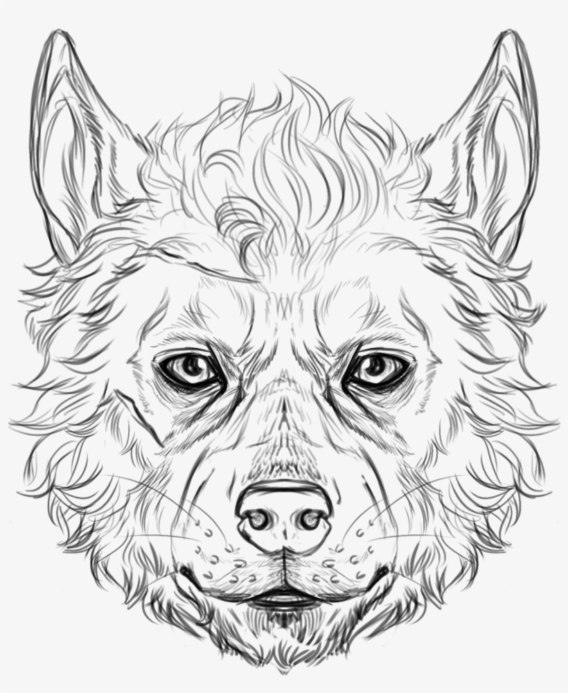 820x1000 Wolf Faces