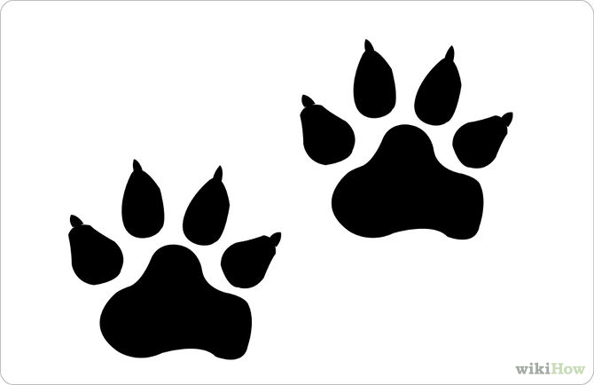 670x434 Drawings Of Paw Prints