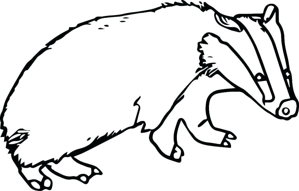1043x668 Paw Print Coloring Sheet Pages Animal Farm