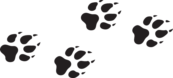 600x273 Wolf Paw Print Transparent Png Clipart Free Download