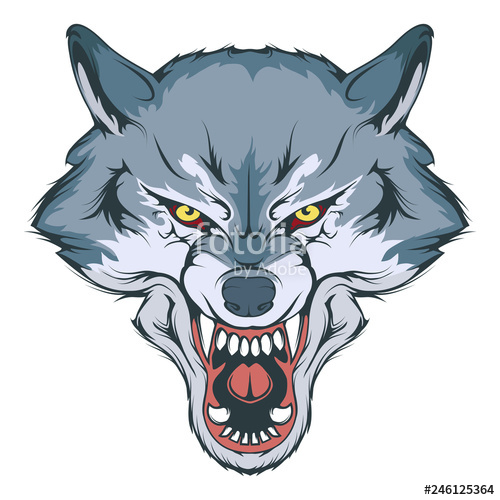 500x500 wolf head vector drawing, wolf face drawing sketch, wolf head